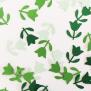 Tulip - Green Tone
