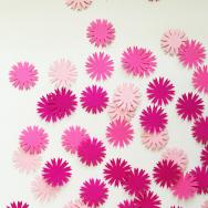 Cornflower - Pink Tone