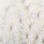 Spider - White